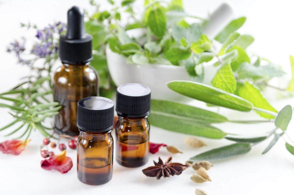 aromathérapie familiale plantes et sens huiles essentielles
