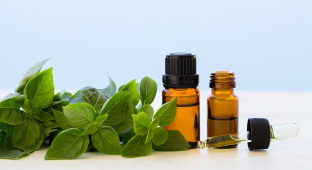 plantes et sens huiles essentielles